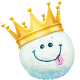 Icon: Town Champion of the <b>Snowball Battles</b>